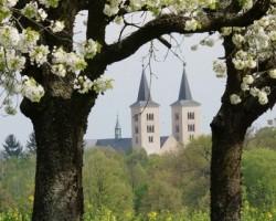 Věže baziliky z dálky